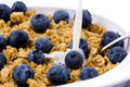 Blueberries_wholegrains